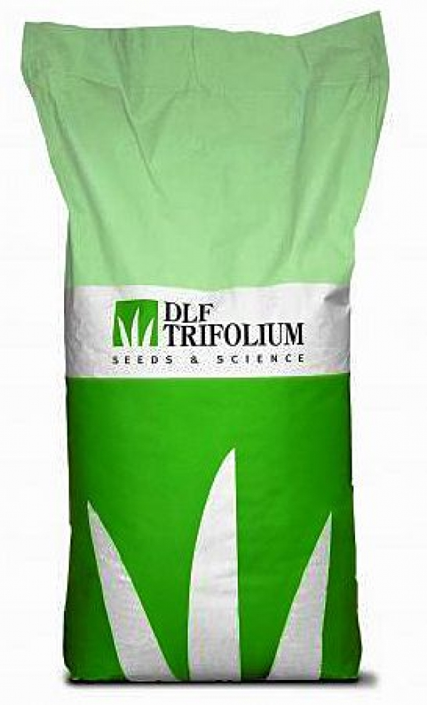 Семена для газона Трифолиум (dlf)