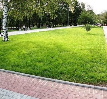 parkovaya